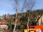 Kácení rizikových stromů Náchod